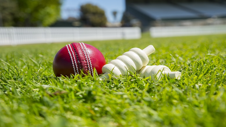 Cricket Ball in field