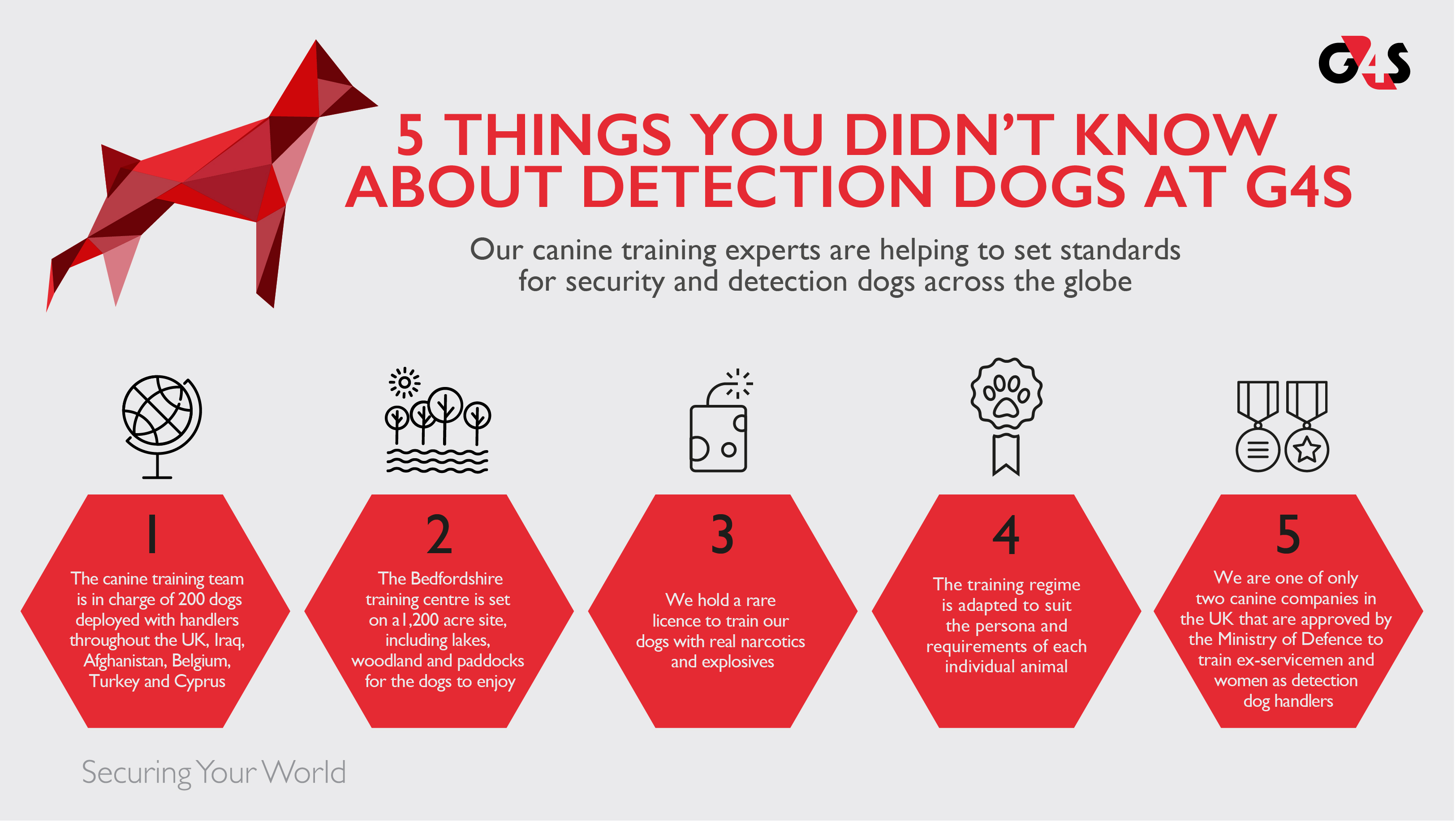 G4S detection dogs infographic
