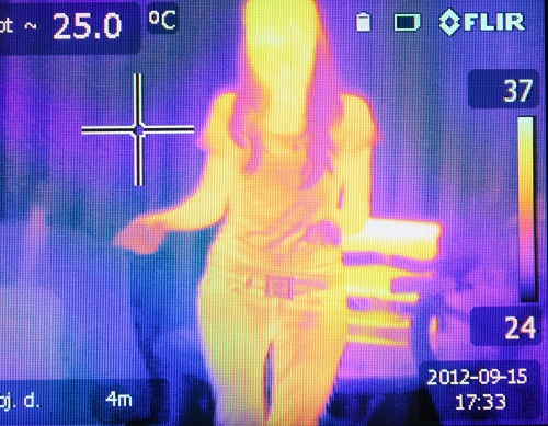 Flaws Expose FLIR Thermal Cameras to Remote Attacks